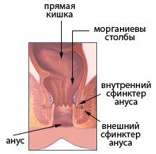 на каие размеры можно ражирить анал без боли